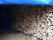 trockenes ofenfertiges Brennholz,
