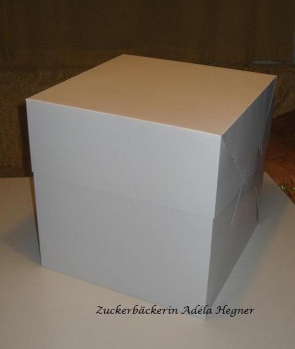 xl tortenkarton verpackung f r torte mehrst ckig in m nchen umzugskartons verpackung kaufen. Black Bedroom Furniture Sets. Home Design Ideas