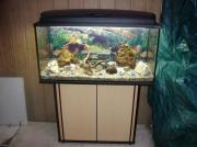 200 Liter Aquarium