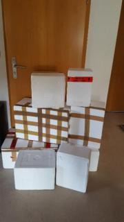 8 Styroporboxen Styroporbox