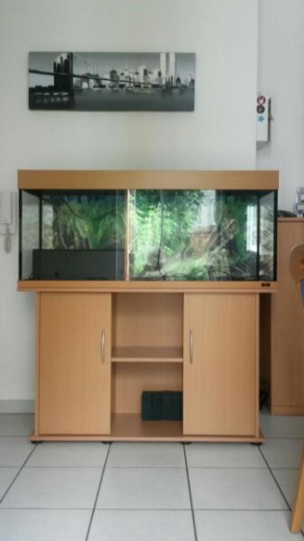 anrufen kleinanzeigen aquaristik kaufen verkaufen bei deinetierwelt. Black Bedroom Furniture Sets. Home Design Ideas