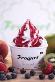 Frozen Yogurt - Konzeptübergabe