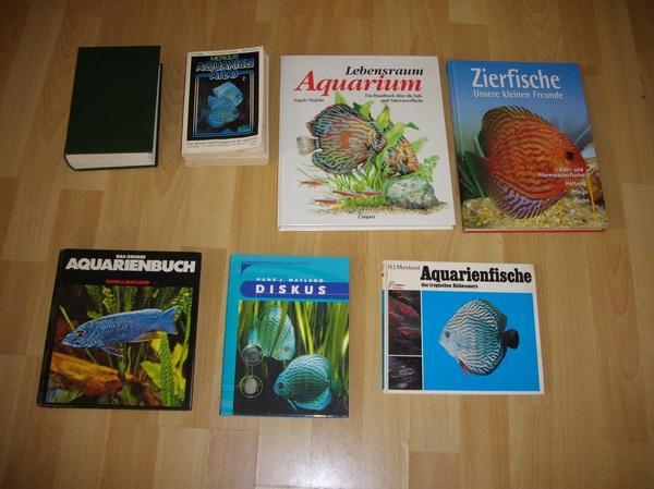 aquarienfische kleinanzeigen aquaristik kaufen. Black Bedroom Furniture Sets. Home Design Ideas