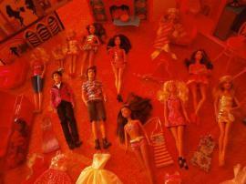 Bild 4 - Geschenk Neuwertige große Barbie-Sammlung - Darmstadt Innenstadt