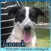 Janosch, 5 Monate