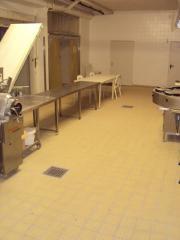 Kfz Werkstatt/ Lagerhalle/