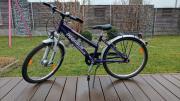 Kinder-Fahrrad Pegasus