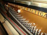 Klavier: Schiedmayer & Söhne