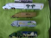 Meine LKW s und Bus-Werbe