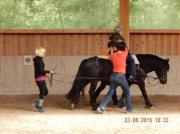 Mögen Sie Pferde Arbeiten Sie