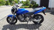Motorrad Honda Hornet