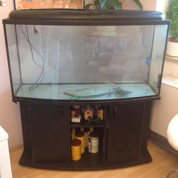 defektes aquarium kleinanzeigen kaufen verkaufen bei deinetierwelt. Black Bedroom Furniture Sets. Home Design Ideas