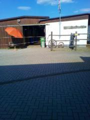 Pferdebox/Stellplatz zu