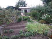 Schöner Pachtgarten zu