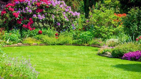 Kleingarten kaufen kleingarten gebraucht - Garten fotos ...