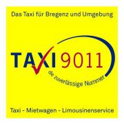Taxilenker für Tagdienst