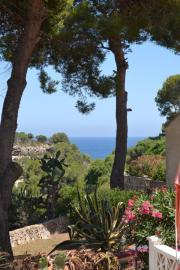 Vermiete auf Mallorca