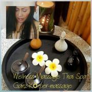 Wellness Massage & Spa